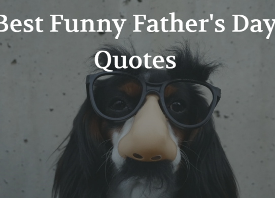 Best Funny Father's Day Quotes