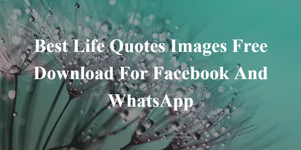 Best Life Quotes Images Free Download For Facebook And WhatsApp